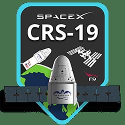 crs-19_thumb